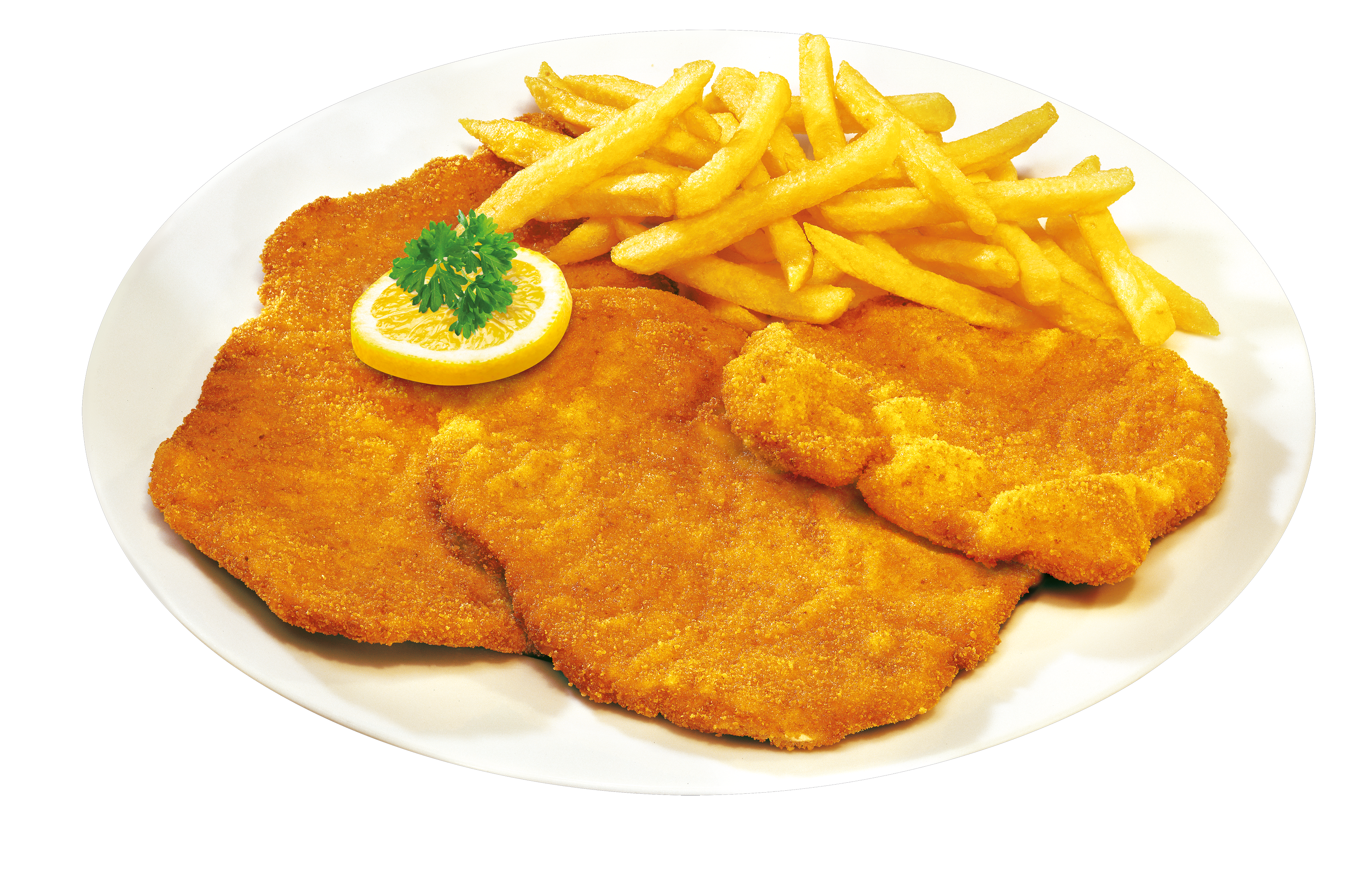 Schnitzel Png ( 30+) Collection.