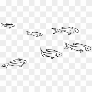 School Of Fish PNG Images, Free Transparent Image Download.