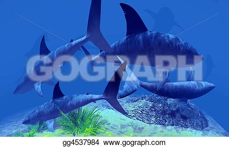 school of sharks clipart #7