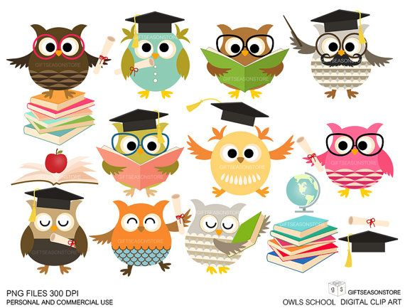 School owls Digital clip art for Personal and Commercial use.