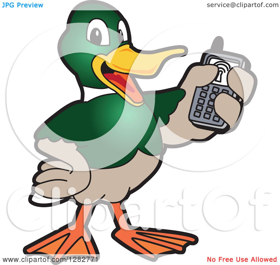 Clipart of a Happy Mallard Duck School Mascot Character Holding up.