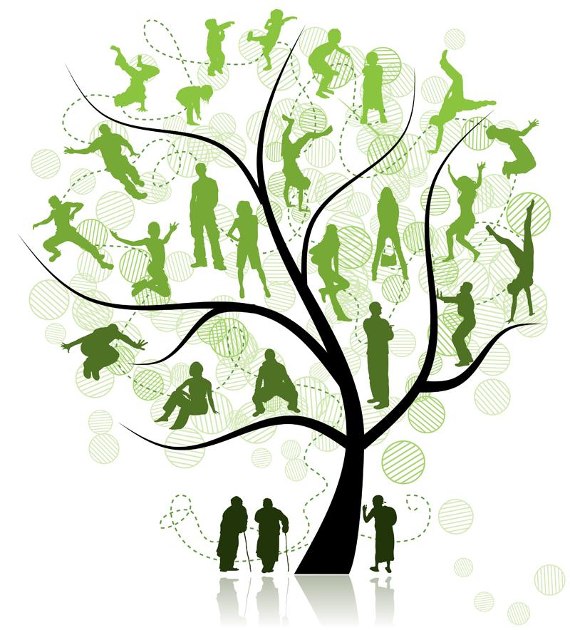 Family reunion tree clip art school clipart library.