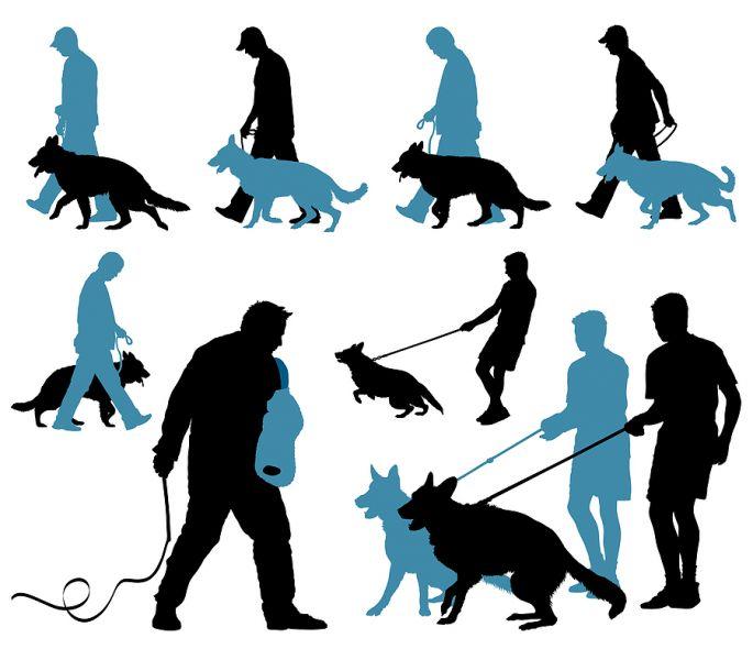 What is Schutzhund and IPO?.