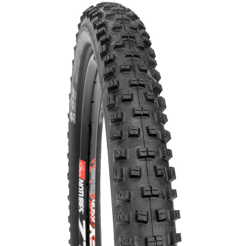 Schwalbe Nobby Nic SS TLE PaceStar Tire.