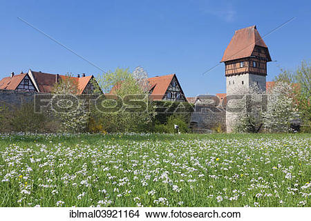 "Stock Photo of ""Bauerlinsturm tower with city walls, Romantic Road."