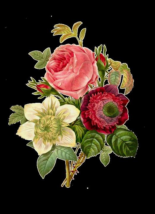 Flower, Border.