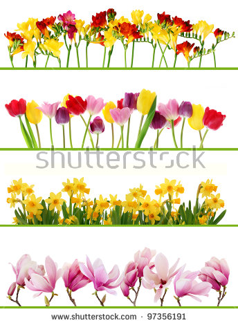 Spring flowers border free stock photos download (13,517 Free.