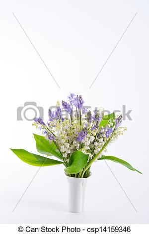 Drawing of Lily of the Valley and Scilla csp14159346.