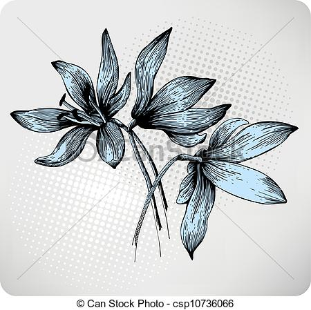 Clip Art Vector of Bouquet of spring Scilla, hand.