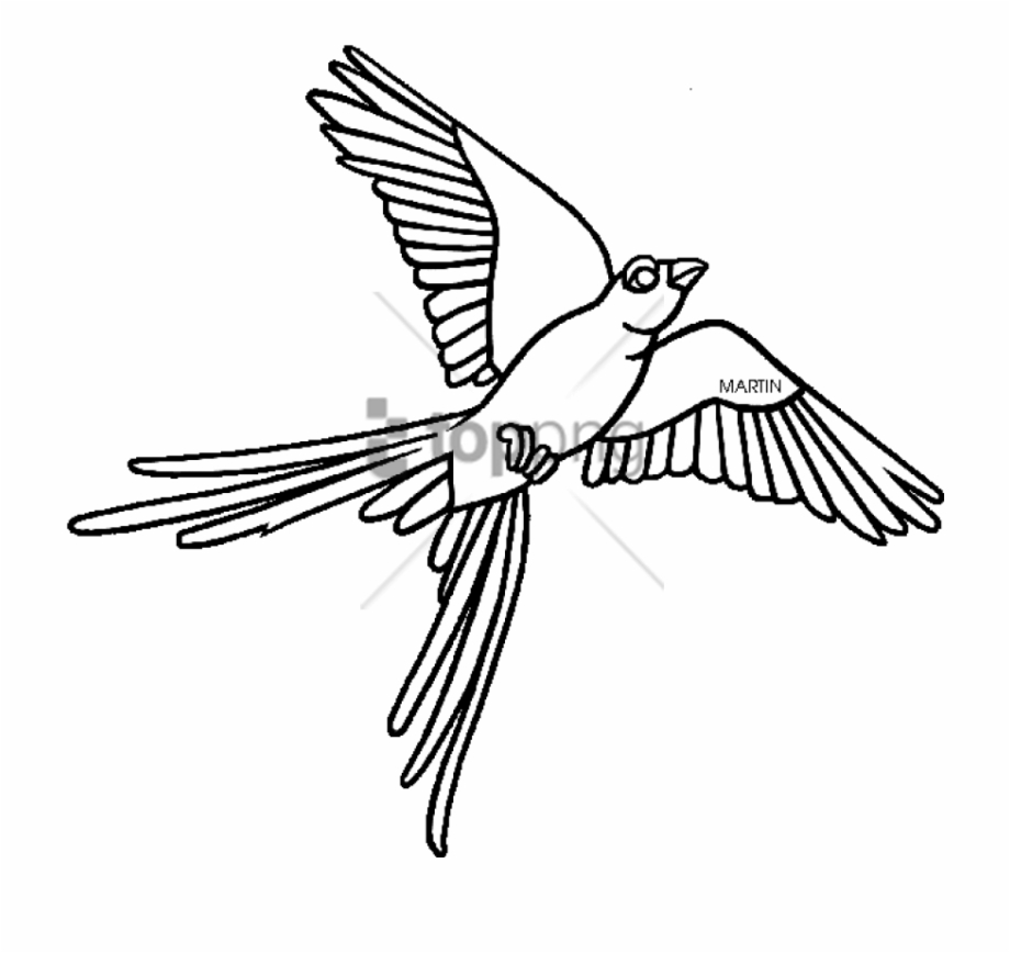 Oklahoma Outline Png Scissor Tailed Flycatcher Clipart.