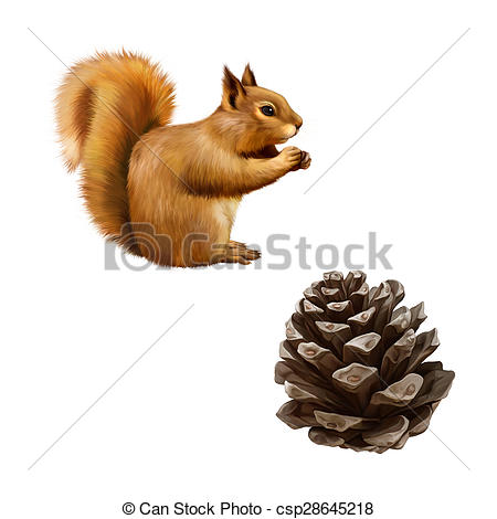 Clipart of Pine cone, Red Squirrel (Sciurus Vulgaris) eating, side.