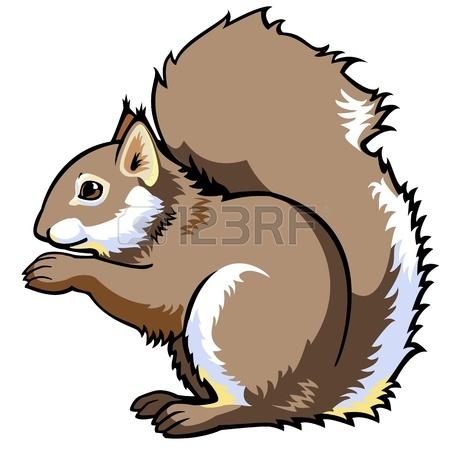 Sitting Squirrel,sciurus Vulgaris,side View Vector Picture.