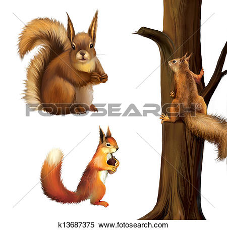 Stock Illustration of Eurasian Red squirrel with cane, Baby.