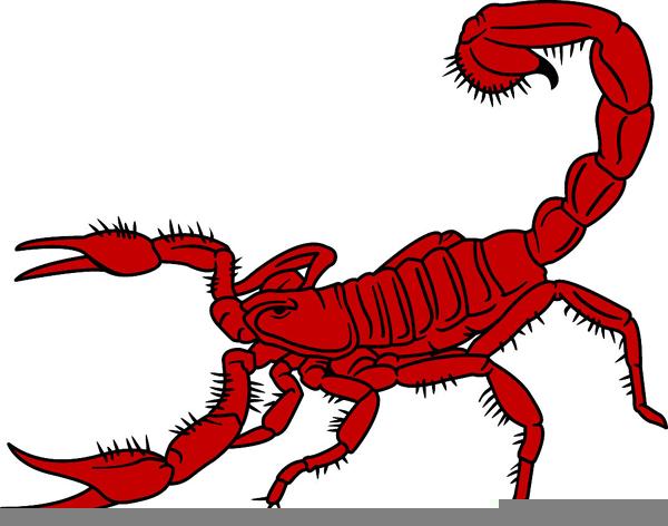 Scorpio Clipart.
