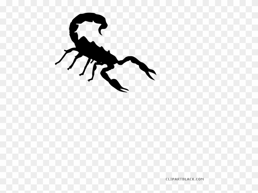 Scorpion Clipart Transparent.