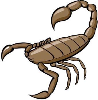 73+ Scorpion Clip Art.