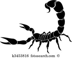 Scorpion Clip Art Illustrations. 2,144 scorpion clipart EPS vector.