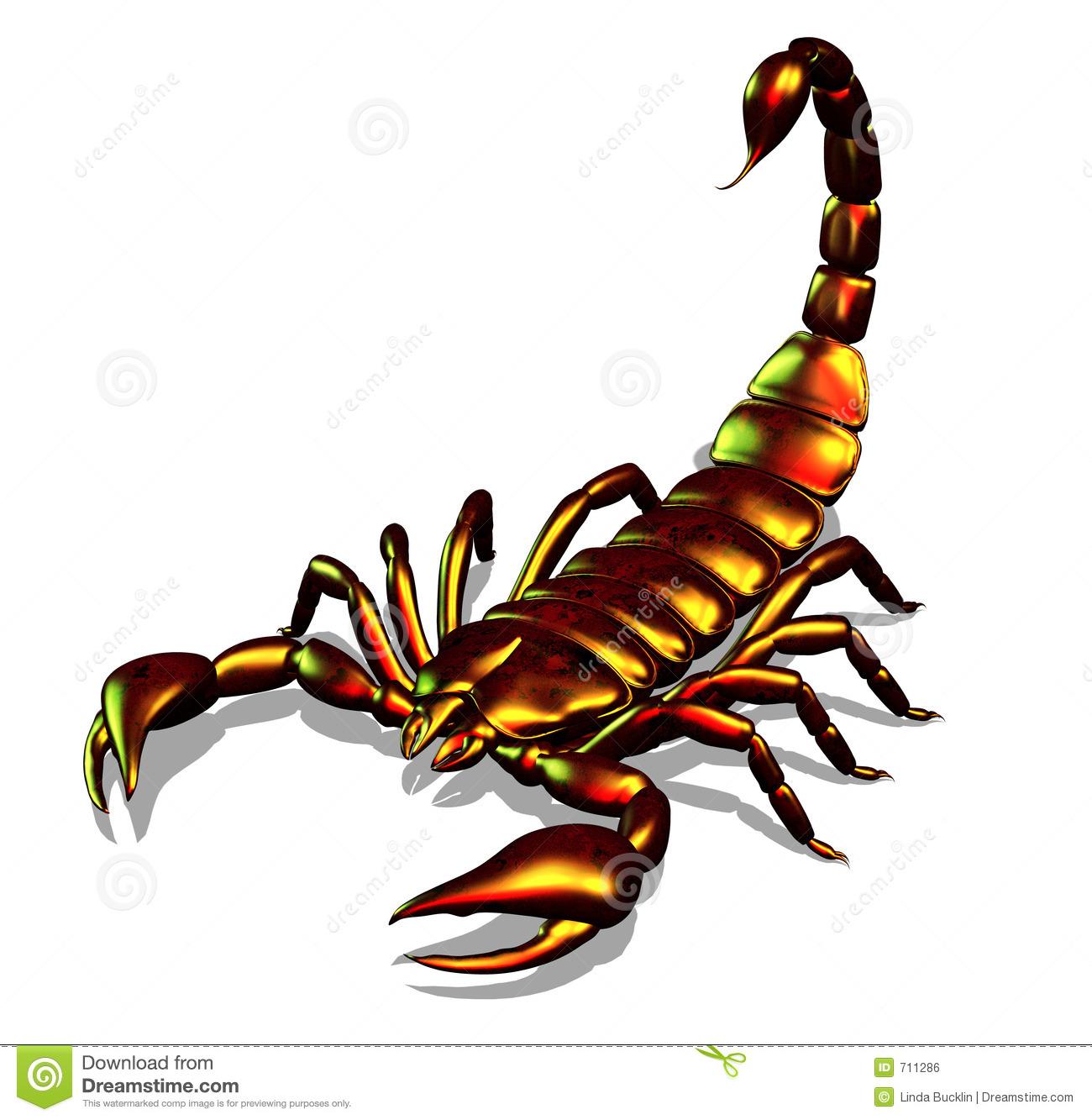Scorpion Clipart.