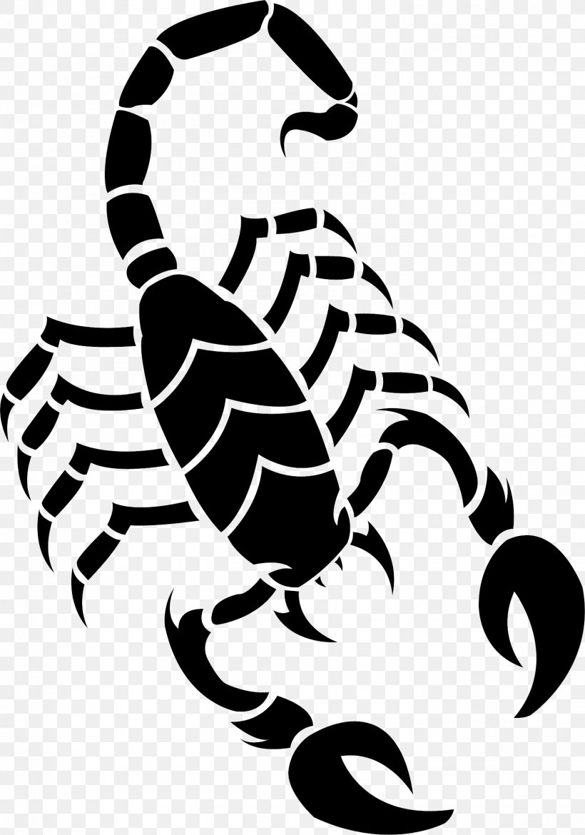 Scorpion Drawing Clip Art, PNG, 1469x2097px, Scorpion.