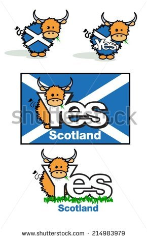 Scottish Cow Stock Photos, Royalty.