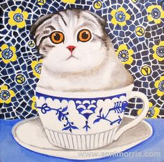 Scottish fold clipart.