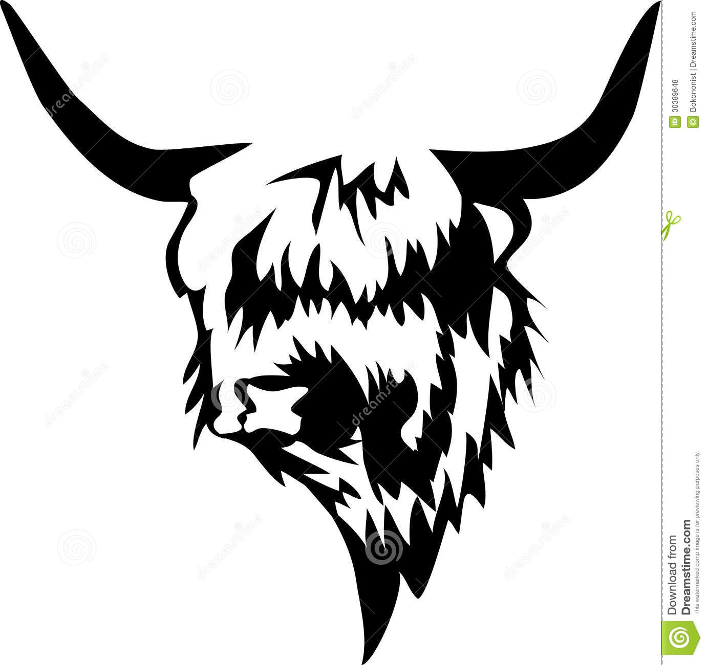 Highland Cow Stock Illustrations.