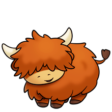 cute fluffy highland cow.