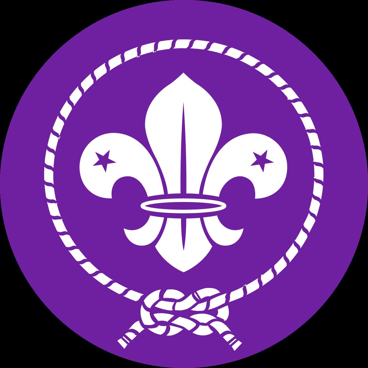 World Scout Emblem.