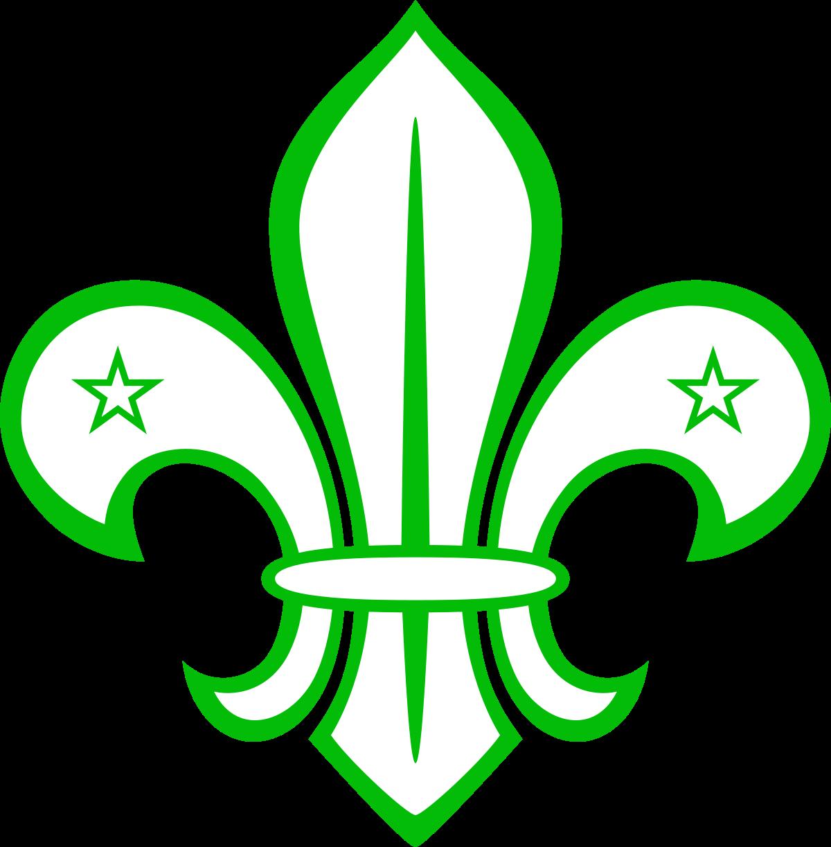 Boy Scouts van Suriname.