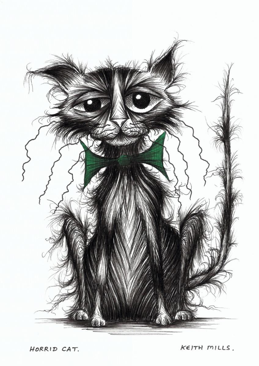 cat doodles.