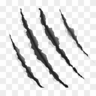 Free Claw Scratch Png Transparent Images.