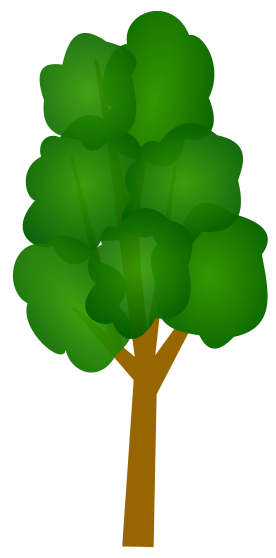 Tall skinny tree clipart.
