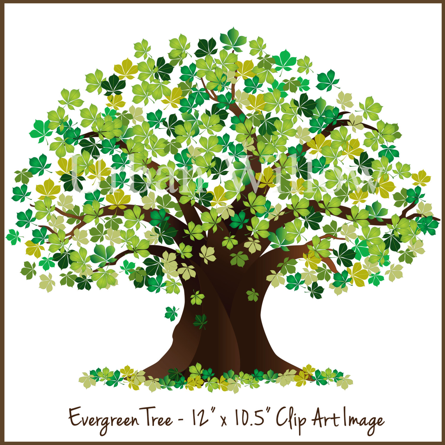 tree clipart oak clip graphic maple evergreen realistic trees cliparts chain photoshop drawing instant golden clipground painting arts 1500 craft