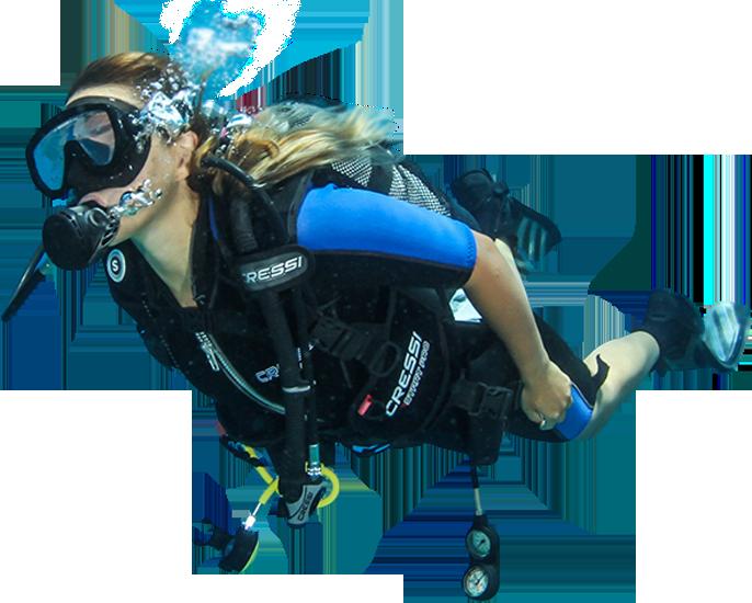 Download Discover Scuba Diving.