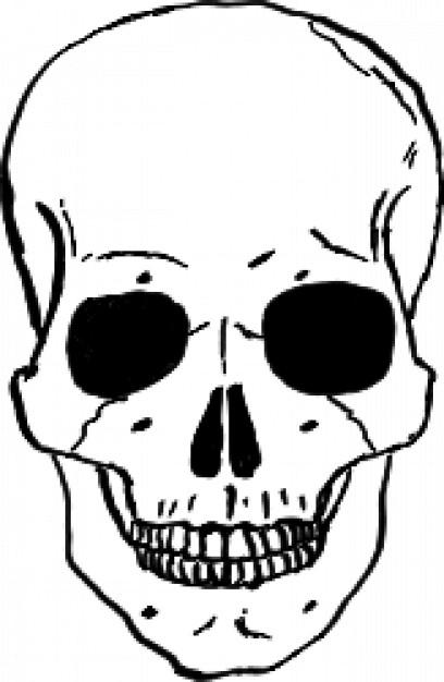 Skull clip art illustration vector Vector.