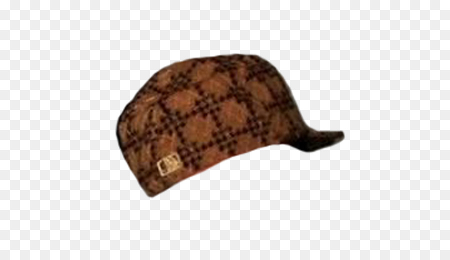 Scumbag Steve Hat Png (103+ images in Collection) Page 1.