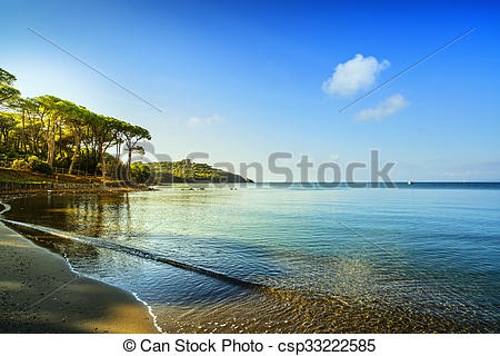 Pictures of Punta Ala, Pine tree group, beach and sea bay. Tuscany.