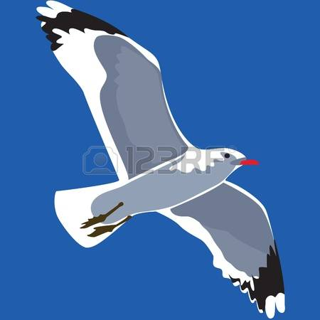 657 Seabird Cliparts, Stock Vector And Royalty Free Seabird.