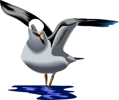 Sea Bird Clip Art.