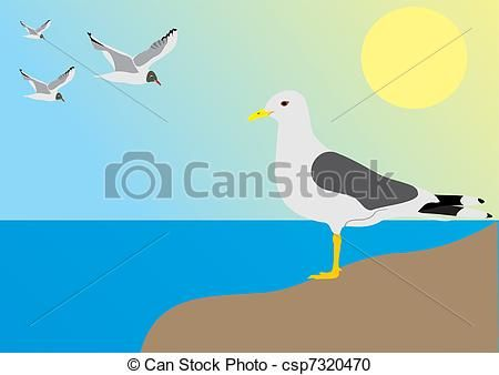 Seagull On the Beach Clip Art.