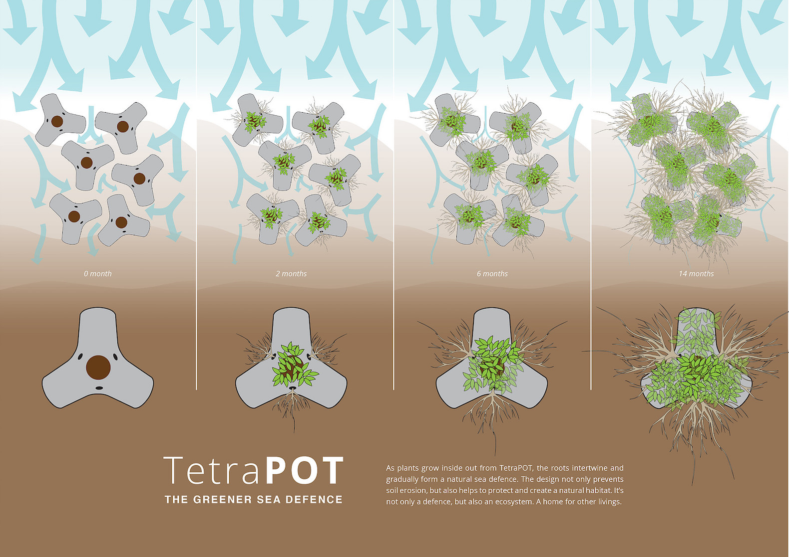 TetraPOT uses mangroves to grow a greener sea defense system.