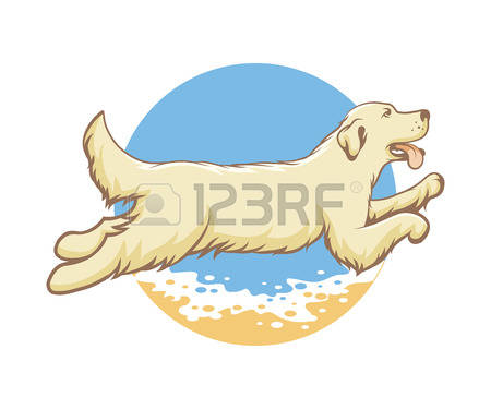1,664 Sea Dog Stock Illustrations, Cliparts And Royalty Free Sea.