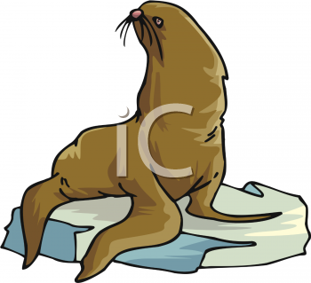 Animal Clip Art Picture of a Sea Lion.