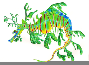 Leafy Sea Dragon Clipart.