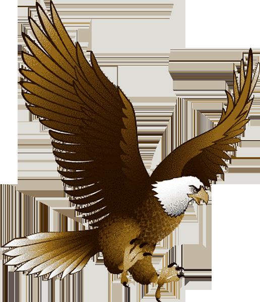 Eagle Clip.