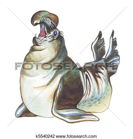 Elephant Seal Clipart.