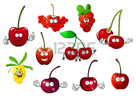 75,405 Cherry Stock Vector Illustration And Royalty Free Cherry.