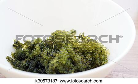 Picture of Sea grape seaweed, uni budou. japanese seaweed.