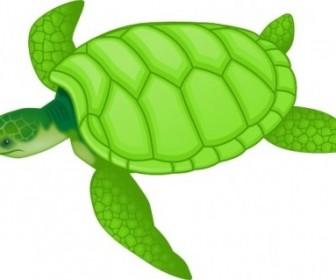 Clip Art Sea Turtle.
