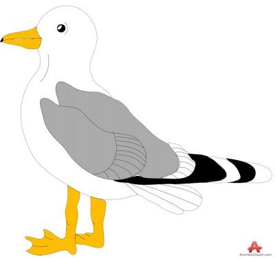 Seagull clip art image.